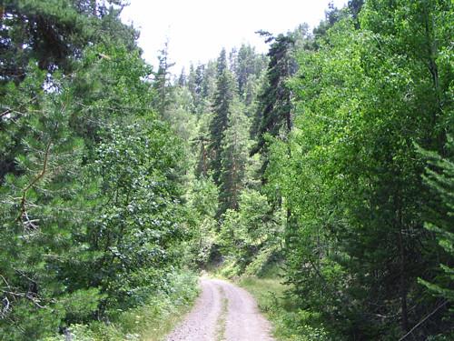 Parque Nacional Soguksu