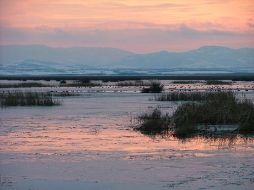 Delta del Kizilirmak